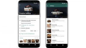 Whatsapp Business Ganha Vitrine Virtual Para Comerciantes Que Vendem Pelo App Tribox